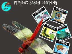 Project Based Learning, Top 5 Bundle, KS1, NGSS, Biomimicry, STEAM