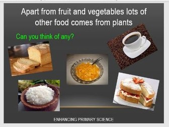 PLANTS FOR FOOD