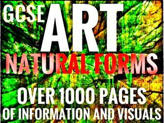 Art. Natural Forms
