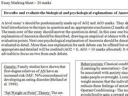 Oligopoly extended essay
