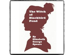 The Witch of Blackbird Pond - (Reed Novel Studies)
