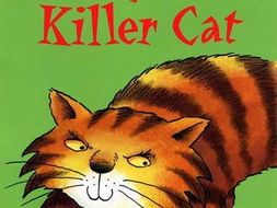 The Diary of a Killer Cat (Anne Fine)  Guided Reading / COMPREHENSION pack