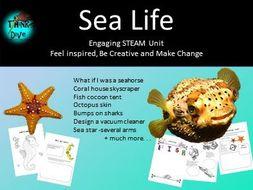 Sea Life - STEAM,  Biomimicry
