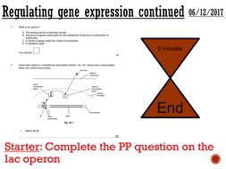 Regulating gene expression - complete lesson (A2)