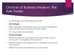 what are sole traders and partnerships Gcse business studies revision section covering sole traders and partnerships, business organisations.
