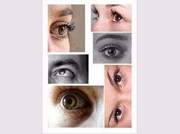 eyes reference sheet for drawing by theartyteacher teaching