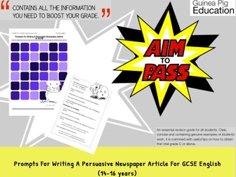 Prompts For Writing A Persuasive Newspaper Article (GCSE English Writing Work Pack)