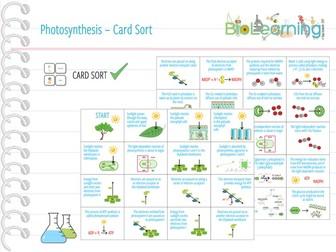 Photosynthesis - Card Sort (KS5)