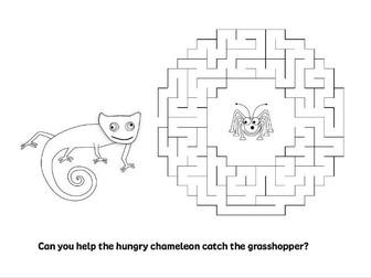 Chameleon maze.
