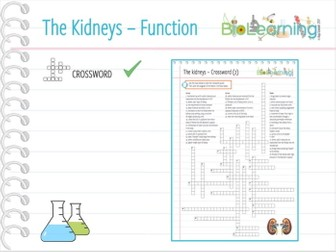 Function of the Kidneys and urine production - Crossword (KS4/5)