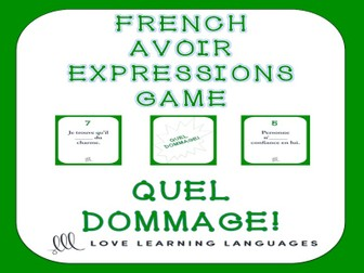 GCSE FRENCH:  French avoir expressions game - Quel Dommage!