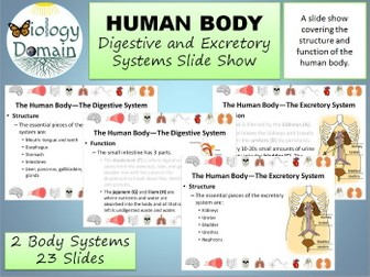 Human Body: Digestive and Excretory Systems Slide Show