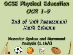 GCSE OCR PE  (1.1b/c) Muscular System and Movement Analysis Mark Shceme