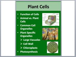 Plant Cells - PowerPoint Lesson and Student Notes Package