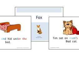 Phonics for SEN: Megacoded Stories - Sets 1-7 Decodable Stories with Visual Scaffolds