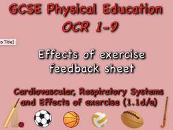 GCSE OCR PE (1.1d/e)  effects of exercise feedback sheet
