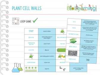 Plant cell wall - Loop Game (KS5)