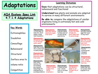 New AQA Ecology Secification- Adaptations- Powerpoint and Worksheets