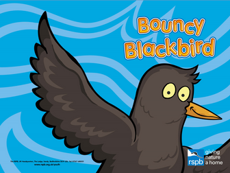 Bouncy Blackbird; Story to teach young children what different foods birds eat