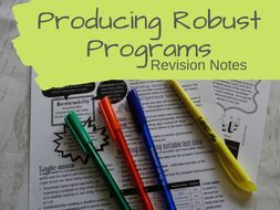 Producing Robust Programs Revision