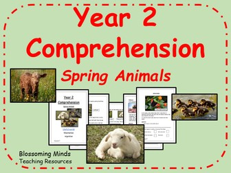 Year 2 SATs style comprehension - Spring Animals (wildlife)