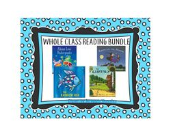Whole Class Reading Pack-EYFS & KS1