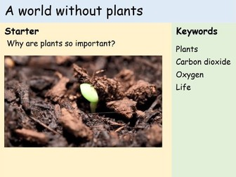 KS3 Plants - Lesson 9 - A World Without Plants