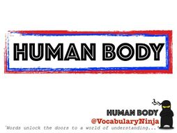 Human Body Topic Vocabulary Pack