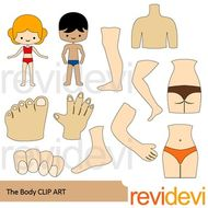 The Body Clip Art Body Parts Clipart Teaching Resources