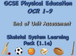 Skeletal System GCSE OCR PE (1.1a) End of unit test