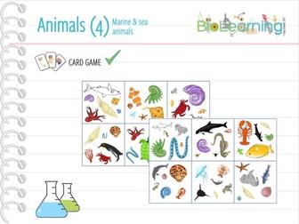 Marine & sea animals - CARD GAME