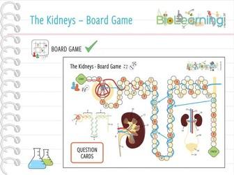 The Kidneys - Board Game (KS4/KS5)
