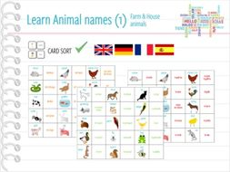 Farm & house animals / animal names - CARD SORT / MEMORY GAME