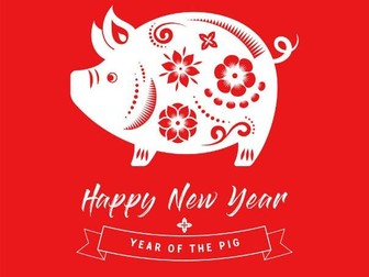 The Year of the Pig Year 6 20 minute Reading Comprehension