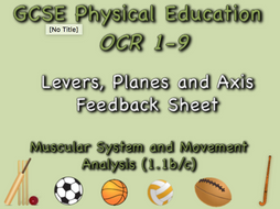 GCSE OCR PE  (1.1b/c) Muscular System and Movement Analysis Levers feedback sheet