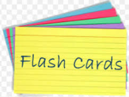 GCSE Computing Revision Flash Cards - Professional Standards