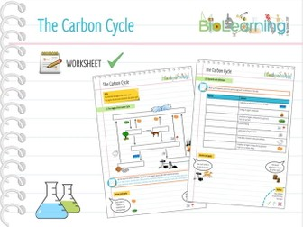 4x carbon and nitrogen cycle 2x powerpoint ppts and 2x worksheets ks3 ks4 by anjacschmidt. Black Bedroom Furniture Sets. Home Design Ideas