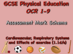 GCSE OCR PE (1.1d/e) Cardiovascular, Respiratory Systems and Effects of Exercise Mark Scheme