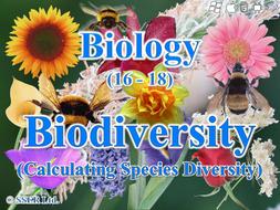 3 4 6 Biodiversity - Species Diversity Index (AQA, Edexcel & WJEC)