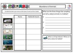ANIMAL SAMPLING TechniquesCLF Lesson & Resources - Lesson 3 - KS2 KS3 KS4 BIOLOGY