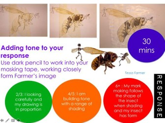 Natural Forms - GCSE - Insects - Artist research - Tessa Farmer