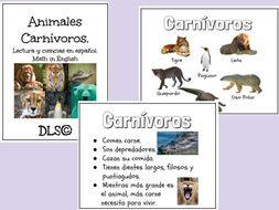 Animales Carnívoros / Carnivores