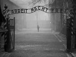 The Holocaust Scheme of Work
