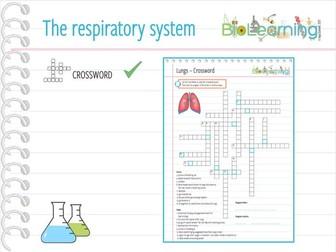 The Respiratory System / Lungs - Crossword (KS3/KS4)