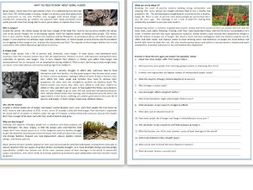 WHAT YOU NEED TO KNOW ABOUT GLOBAL HUNGER - Reading Comprehension Worksheet / Text