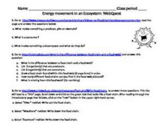 Energy movement in an Ecosystem WEBQUEST