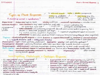 OCR A Level Biology Plant & Animal Responses Revision Poster