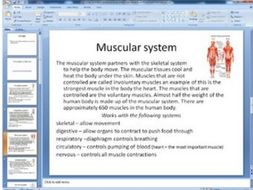 6 major body systems gallery walk note taking and question sheet Intro/review