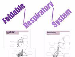 Foldable Respiratory System