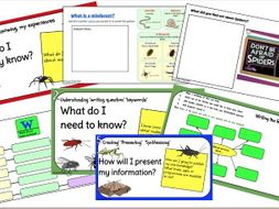 Minibeasts 'An Inquiry Approach'